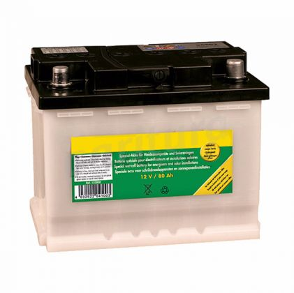Speciale Wet-Cell Battery