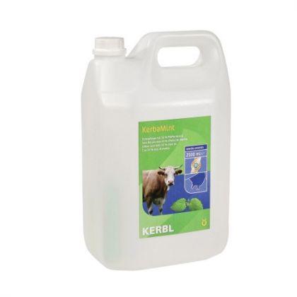 Euterpflegemittel KerbaMint