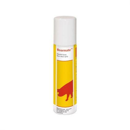 Cinghiale Profumo Spray Boarmate