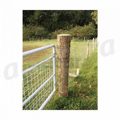 Pasture Gate with Wire Mesh, height 1 m