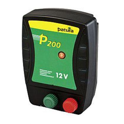 P200 Energiser per batteria da 12 V.