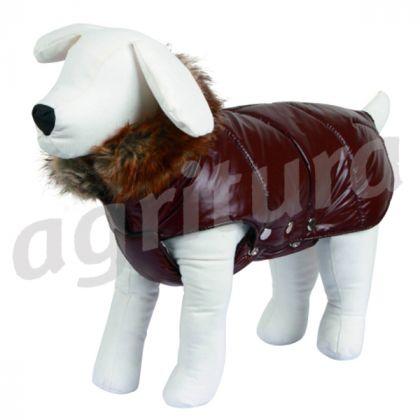 cane cappotto kitzbühel