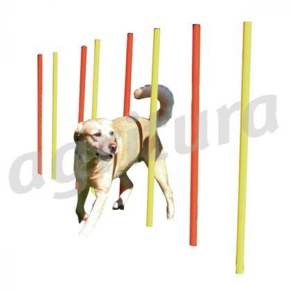 agilità slalom