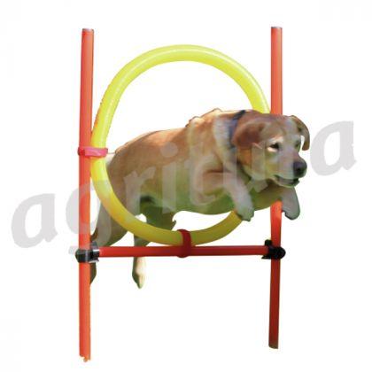 agilità hoop
