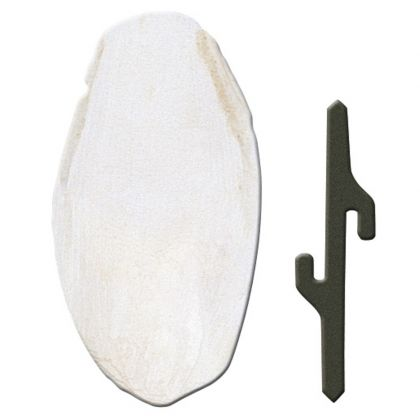 Cuttlebone Pa 4330