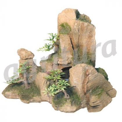 Pietre con piante