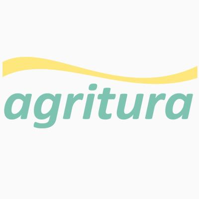 Collare 85 x 4 cm con anello ovale e anello a D