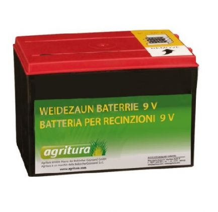 Weidezaun Batterie