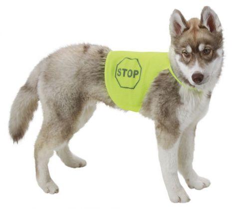 Casacca velcro riflettente sicurezza cani giubbotto