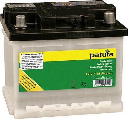 Standard Wet-Cell Battery