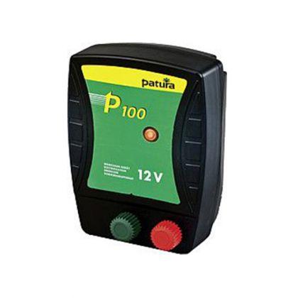 P100 Energiser per 12 V batteria