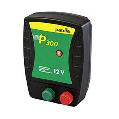 P 300 Energiser per 12 V batteria